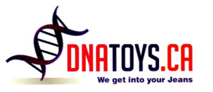 DNAToys
